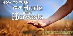 How to Turn Your Hurts Into Harvests