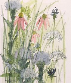 Watercolor Painting Illustration Natural History Wildflowers  Could be cool as a half-sleeve.