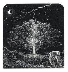 Lightning tree woodcut