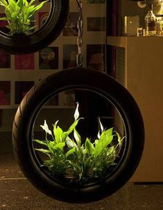 Tire Garden, Garden Art, Flower Planters, Flower Pots, Reuse Old Tires, Recycled Tires, Reuse Recycle, Recycled Crafts, Tire Furniture