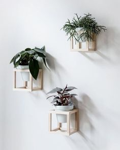 Вот такой простой декор в эко-стиле, кстати, можно сделать своими руками :) отлично подойдёт для украшения стен на даче 😌