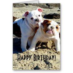 English Bulldogs Puppy Love Birthday Cards