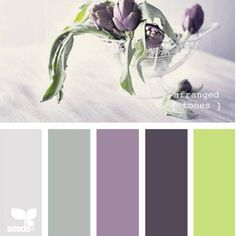 Design Seeds { color } | Book Preview