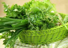 Как освежить увядшую зелень?   Положите ее в подкисленную холодную воду на один час. Воду необходимо подкислить уксусом, в расчете на литр воды одна столовая ложка 9 % уксуса.