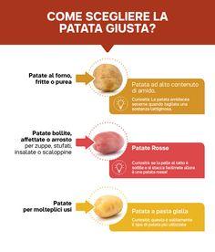 Visual Tupperware, Potatoes, Cooking, Salads, Kitchen, Cuisine, Koken, Potato, Tub