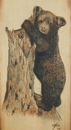Wood-Burning Patterns for Beginners   Beginner Wood Burning Patterns Woodburning kit - bear cub