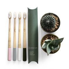 Toothbrush Storage, Eco Friendly Cleaning Products, Moso Bamboo, Eco Beauty, Clean Beauty, Best Teeth Whitening, Teeth Care, Green Life, Grey Paint