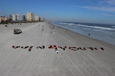 24 employees from Adecco, Beeline, Modis & Pontoon, along with their family & friends, met up on Sunday January 20th in Jacksonville Beach, Florida for a unique & memorable Win4Youth 5K experience. The group photo was shot from the Jacksonville Beach Pier, while employees & their families, spelled out Win4Youth in the sand below!