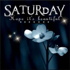 Day And Night Quotes, Saturday Morning Quotes, Happy Day Quotes, Saturday Humor, Saturday Saturday, Sunday, Weekend Quotes, Morning Sayings, Happy Saturday Pictures