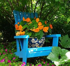 Chair at the display garden.