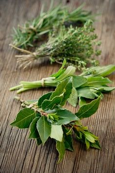 Some herbs that I would love to grow in my own garden and dry for the kitchen: bay laurel (bay leaves), sage, thyme, and tarragon.