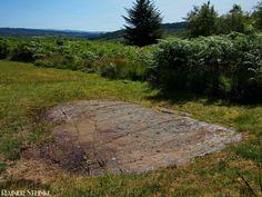 Die geheimnisvollen Felsgravuren bei Cairnbaan (GB).  Gleich oberhalb des kleinen Ortes Cairnbaan in Schottland sind sie zu finden die geheimnisvollen Gravuren im Fels. Spiralen Kreise vorzeitliche Lautsprecher ;) welche Bedeutung sie einst hatten ist unbekannt auch wie alt diese Gravuren sind lässt sich nur schwer schätzen aber vergleichbare Strukturen wurden auch schon in Gräbern gefunden die zwischen 1000 und 3500 vor Christus datiert wurden. Von Experten wird das Alter der Gravuren auf…