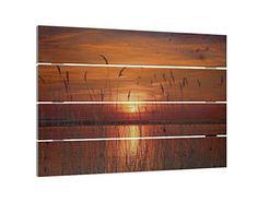 Holzbild Schilf im Sonnenuntergang B x H: 70cm x 48cm
