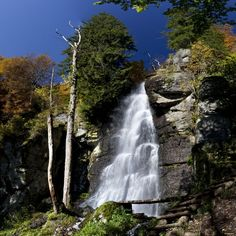 Tento rok CHKO - Biosférická rezervácia Poľana vyhlásila na základe ankety sedem divov Poľany. Najviac hlasov získal vodopád Bystrého potoka.