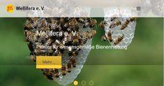 Wir setzen uns für eine ökologische und wesensgemäße Bienenhaltung und den Schutz der Bienen ein. Schulungsangebote für Imker.