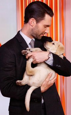 Adam Levine Cradles Adorable Puppy on 'Today Show'!: Photo Adam Levine was dapper while arriving for an appearance on Live with Kelly & Michael at ABC Studios on Friday (November in New York City. Adam Levine, Clive Owen, Andy Garcia, Golden Retriever, Maroon 5, My Guy, Big Picture, Gorgeous Men, Beautiful People