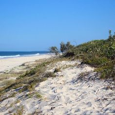 Bribie Island, Queensland. Paper Aeroplane | Travel Blog @ www.thepaperaeroplane.com. Ah, the smell of salt and sand... #WITCHERYSTYLE #travel #australia #beachbums #sunkissed #dunes #ocean #wanderlust #paperaeroplane #travelblog