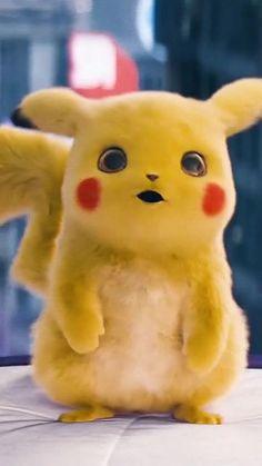 Foto Pikachu, Pikachu Cat, Pikachu Drawing, Baby Animals Super Cute, Cute Baby Dogs, Cute Little Animals, Cute Cat Wallpaper, Cute Pokemon Wallpaper, Cool Pokemon Wallpapers