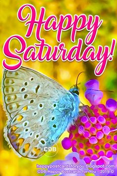 Greetings postcards and free wallpaper, WhatsApp and Smartphone Saturday Morning Quotes, Weekend Quotes, Morning Humor, Good Morning Quotes, Monday Quotes, Beautiful Butterfly Images, Good Morning Beautiful Images, Good Morning Love, Saturday Greetings