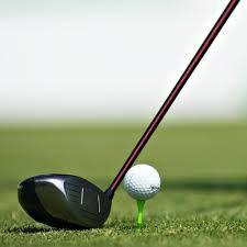 Znalezione obrazy dla zapytania golf