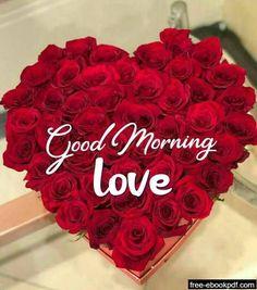 Good Morning For Him, Good Morning Nature, Good Morning Flowers, Good Morning Beautiful Pictures, Good Morning Images Hd, Morning Pictures, Good Morning Greetings, Good Morning Wishes, Good Morning Massage