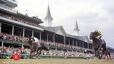 1996 - Grindstone - 122nd Derby Winners, Thoroughbred Horse, Kentucky Derby, Horse Racing, Horses, Travel, Legends, Viajes, Destinations