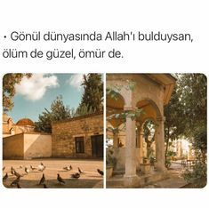 Muhammed Sav, Allah Islam, Mount Rushmore, Taj Mahal, Religion, Building, Nature, Travel, Life