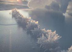Afbeeldingsresultaat voor frost flowers