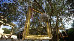 Bereit für Bilder! #hochzeitaufmallorca #andersheiraten #weddingdecoration #frankiesunshine #aufmallorca #weddingplanner #frankiesunshine