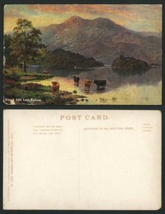 ELLEN'S ISLE, LOCH KATRINE, Lake Cattle, E. Longstaffe Artist Drawn ...