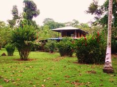COSTA RICA :: Pedro's Place Vacation Rentals - Two Bedroom and Studio Apartments - Puerto Viejo de Talamanca, Limon, Costa Rica