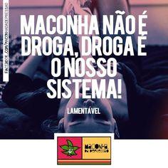 Maconha não é droga, droga é o nosso sistema! Lamentável. (Mesmo não fumando, isso é fato! hahaha)