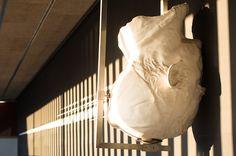 """#UVic, Universitat de Vic. """"Guixar amb el rostre"""" 1999-2005. Autor: Pere Jaume."""