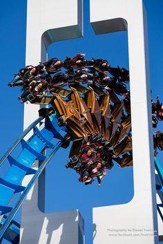 Amusement Park Rides, Abandoned Amusement Parks, Abandoned Cities, Abandoned Mansions, Best Roller Coasters, Universal Studios Florida, Cedar Point, Carnival Rides, Six Flags