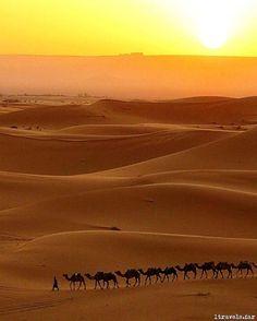 A caravan of camels crosses the Sahara desert in Morocco. Thanks to traveller @1travels.far for sharing this incredible sunrise with us. #gadv #regram Hotels-live.com via https://www.instagram.com/p/BBSDJkuCqj2/