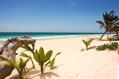 Our private beachfront. Heaven!  #casachictulum