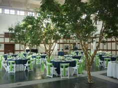 Image detail for -Blue_and_Green_wedding_in.jpg