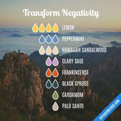 Transform Negativity - Essential Oil Diffuser Blend