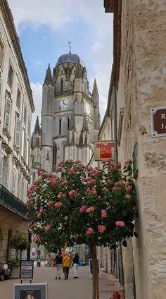 Cathédrale Saint-Pierre   -    Saintes Barcelona Cathedral, France, Travel, Viajes, Destinations, Traveling, Trips, French