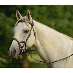 Artisan Side Pull Bitless Bridle Reins and Cordeo Natural Horsemanship