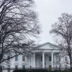 Exploring Washington D.C.
