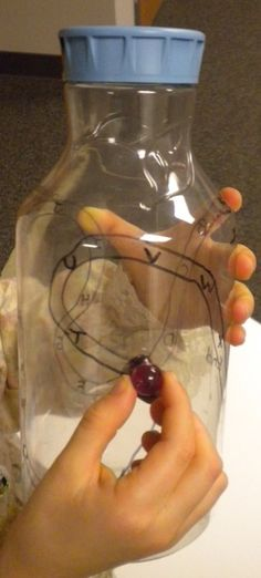 Bilateral coordination and midline crossing, plus visual skills.... Bottle Maze - The OTs Bag