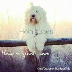 Yes you can!  Start today   BE HAPPY  ✌Muy feliz semana✌  #june #namaste #spirituality #evolution #aquiyahora #hereandnow #meditation #earth #lovedogs #gaia #gaiaqueremosqueseasfeliz