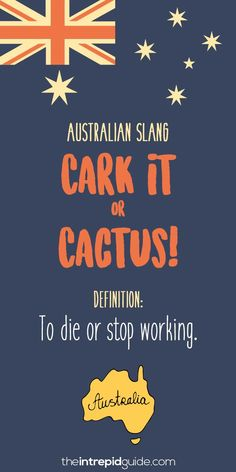 Australian Slang: 31 Hilarious Australian Expressions You . australian christmas sayings Australian Memes, Aussie Memes, Australian Sayings, Australian English, Intj, Funny Quotes For Teens, Funny Quotes About Life, Bye Felicia, 21 Day Fix