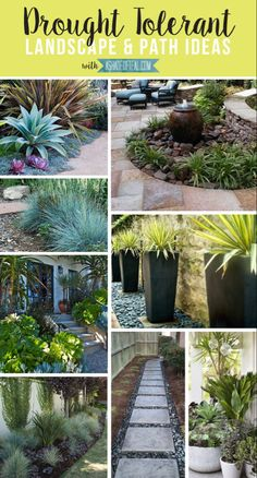 67 Ideas For Landscaping Backyard Shade Drought Tolerant Modern Landscape Design, Landscape Plans, Modern Landscaping, Front Yard Landscaping, Backyard Landscaping, Landscaping Ideas, Landscape Edging, Landscape Art, Landscape Paintings