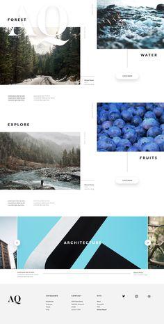 Explore website concept
