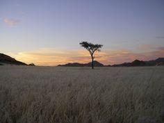 Namibia Safari Off-road - Google Search