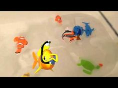 Real Fish in The Bathtub?Disney Finding Dory Water Toys Playtime - YouTube