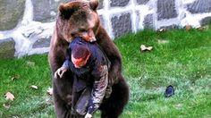 أقوى هجوم الحيوانات المفترسة على البشر 3ajil.me/?p=16231