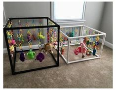 Dog Whelping Box, Whelping Puppies, Toy Puppies, Puppies Puppies, Puppy Nursery, Puppy Room, Dog Play Room, Puppy Playground, Puppy Pens